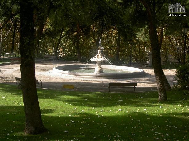 сосны в садах Сабатини